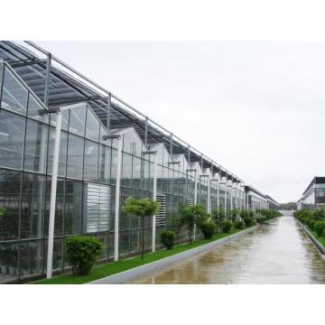 Estabilizador de luz para cubiertas de película de invernadero
