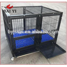 Heavy Duty Square Tube Dog Cage Kennel avec quatre roues à vendre (WhatsApp: +86 13331359638)