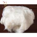 Wool Cashmere Fiber White