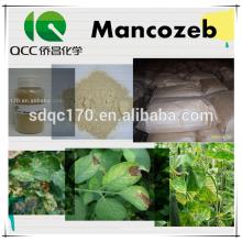 Fongicide Mancozeb 90% TC 80% WP CAS 8018-01-7