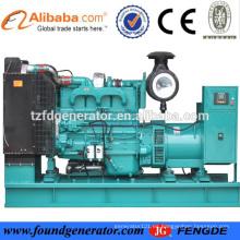 China power 60hz 225kva generador diesel establecido en el mercado de Filipinas