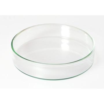 Petri Culture Dish Made of Glass (1177)