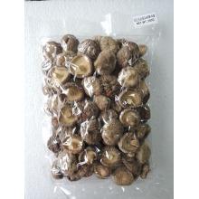 Dried Mushroom 3-4cm cut root