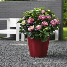 (BC-F1032) Fashionable Design Plastic Self-Watering Flower Pot