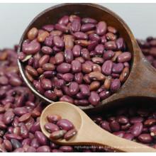 Samll Red Kidney Bean / frijol China