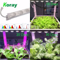 2 anos de garantia famly plantio levou cresce a luz à prova d 'água ip67 planta lâmpada