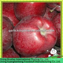 Китай красный Хуаниу яблочный завод