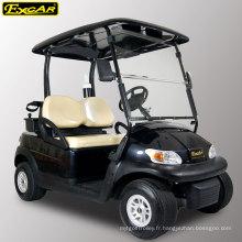 Chariot de golf électrique 2 places