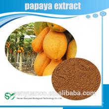 Poudre d'extrait de papaye d'herbe organique à chaud pour la santé et la beauté