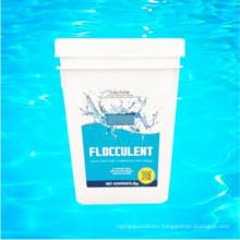 Aluminium Sulfate for Swimming Pool Flocculant Chemical (Pool Floc)