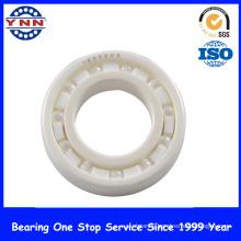 Full Ball Si3n4 Ceramic Ball Bearing (6006 6206 6306)