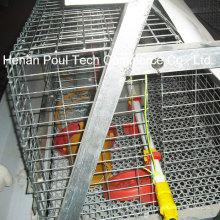 Little Chicken Cage Equipment