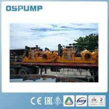 Doppelflügelige Dieselmotor Entwässerung mit zwei Saugpumpen und / oder Dieselmotor Wasserpumpe Set