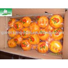 Продаем большой мандарин оранжевый Брат Королевство