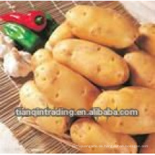 chinesische Süßkartoffel