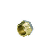 Cap Male Screw Fitting with Nikle-Plated (Hz8046)