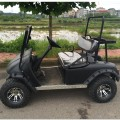 Carrello da golf economico Off Road Gas Power