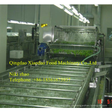 Máquina de escaldado vegetal, Equipo de escaldado de frutas y verduras