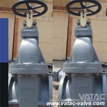 JIS Std Cast Iron RF Flanged Ends Marine Gate Valve