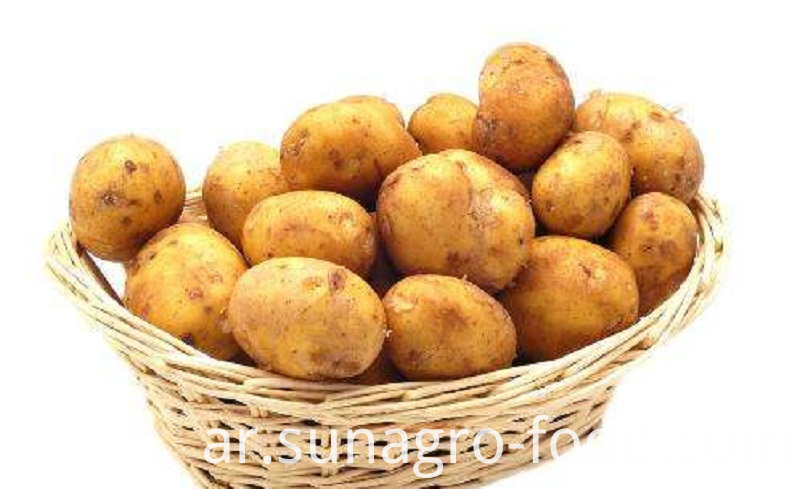 Organic Crisp And Delicious Potatoes