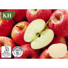 100% Natural Apple Pectin Powder: Galacturonic Acid 65% 10: 1