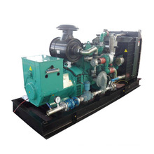 Natural gas genset 380kVA for sale