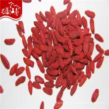 Bayas de Goji a granel precio de la baya de goji, de Himalaya goji berry área