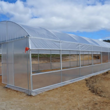 Tunnel greenhouse with UV protection for growing vegetables