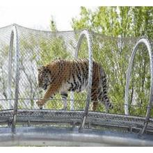 Flexible Stainless Steel Cable Mesh for Zoo