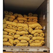 Свежая картошка Голландии