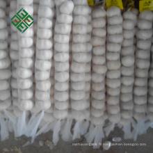 2017 vente chaude pur blanc ail frais