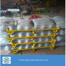 Galvanized Plant Spiral Support for Plant Climbing Wire