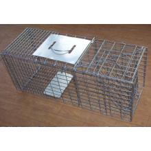 Cages vivantes humanistes de chasse d'animal pour attraper des rats / vison / rongeur