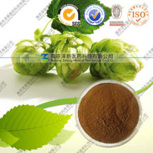 Xanthohumol 5% -98% Direkt Hersteller