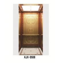 Ascensor de Villa con Titanio Acabado Acero Inoxidable Acabado (KJX-BS08)