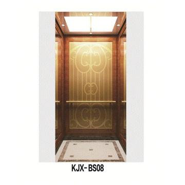 Villa Ascenseur avec titane en soie fini en acier inoxydable (KJX-BS08)