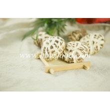 Vegetal secado de Quliaty do cogumelo da flor branca