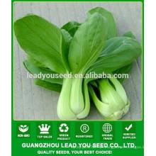 NPK03 Yuhua Melhores sementes de pak choi de alto rendimento para o plantio