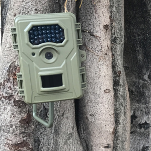 940nm PIR Army Green Camouflage Camera