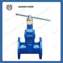 Locking type soft sealing gate valve