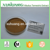 Kosher Halal ISO 9001 Factory Supply Tribulus terrestris 90% saponins/Terrestris Extract