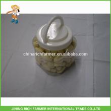1LB X20 / Ctn Nouvelle récolte de qualité supérieure Shandong Ail pelé frais