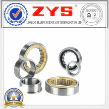 Cylindrical Roller Bearings N1080k