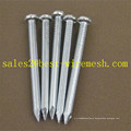 Galvanized Twisted/Spiral Shank Steel Concrete Nails