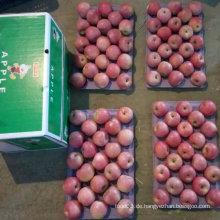 Neuer Ernte Qinguan Apfel kommt