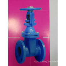 Rising Resilient Seated Gate Valve