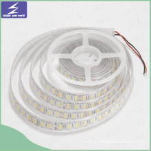 Outdoor Decoration LED Strip Light with High Quality
