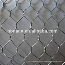Galvanized Hexagonal Wire Mesh / Gabion Mesh / hexagonal chicken coop wire netting