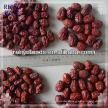 red Chinese date date fruit