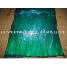 2011 chinês fresco alho sprout